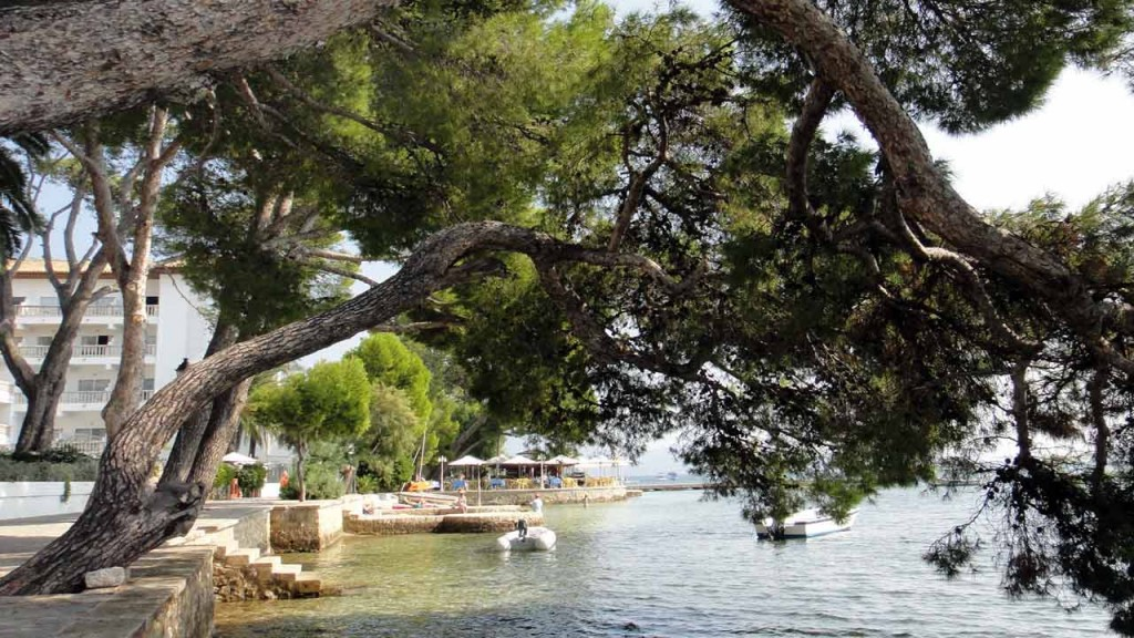 Must Do Things In Puerto Pollensa Pollensa Guide Com